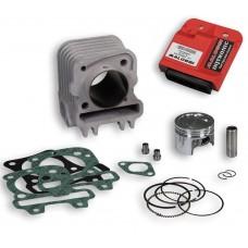 Cilinder Malossi 49,0mm + ECU | Piaggio 4T 3V