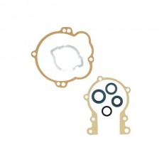 Pakking + keerring set Vespa/Gilera bromfiets CIF9381-CP